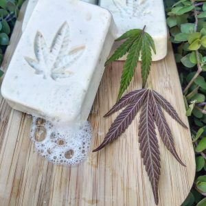 Rectangular white cannabis leaf soaps with cannabis leaf impression