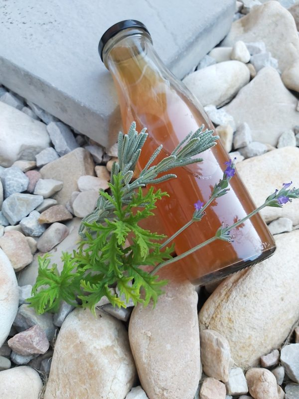 Kombucha Hair Rinse infused with herbs in a glass bottle